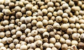 Vietnam White Pepper