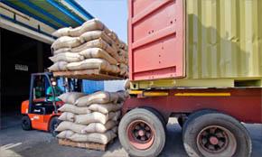 Import White Pepper from Vietnam